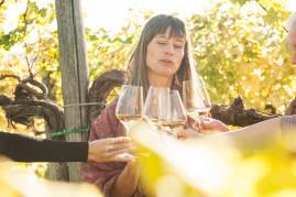 Gavi wine tasting with walking through the vineyards
