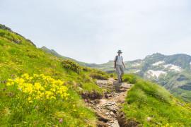 Guided walking safari in Gran Paradiso National Park
