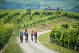 Langhe Experience: in E-bike tra vigneti e castelli con wine tasting