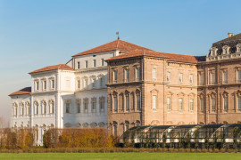 Palace and Gardens of Venaria: entrance and guided visit