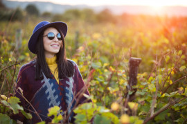 Erbaluce wine trail: hiking and Agliè Castle tour, UNESCO site