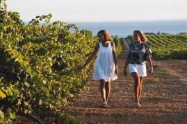 Degustazione di vino nella riserva naturale di Mazara del Vallo
