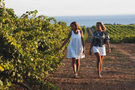 Wine tasting in the nature reserve in Mazara del Vallo