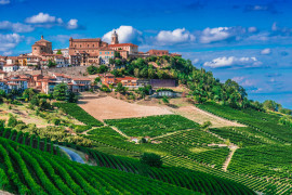 The Barolo trail: hiking and wine tastings in two historical wineries