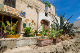 Apulian pottery tour: workshop and visit of Grottaglie with transfer from Ostuni