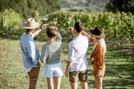 Vineyard aperitivo in Locorotondo