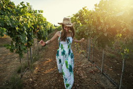 Sunset vineyard stroll and wine tasting in Itria Valley