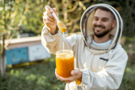 Organic honey from Madonie: visit to the apiary with tasting