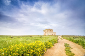 Tour della riserva naturale di Torre Guaceto