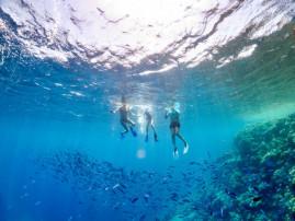 Snorkeling Siracusa: un tuffo nella Riserva del Plemmirio