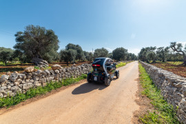 Itria Valley Twizy tour and olive oil tasting