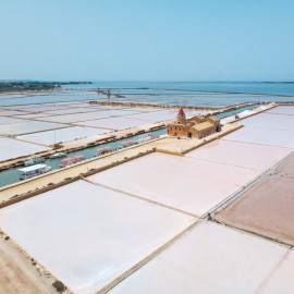 Tour of Marsala saltpans, Motia island and wine tasting