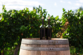 Il vino pugliese